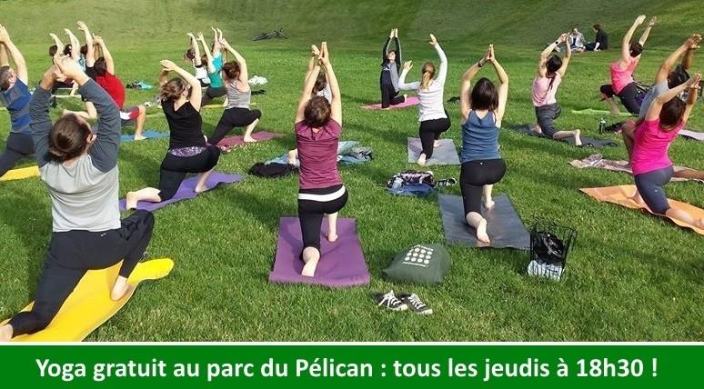 surya-montreal-pelican-yoga2-petit