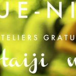 montreal-pique-nique-event