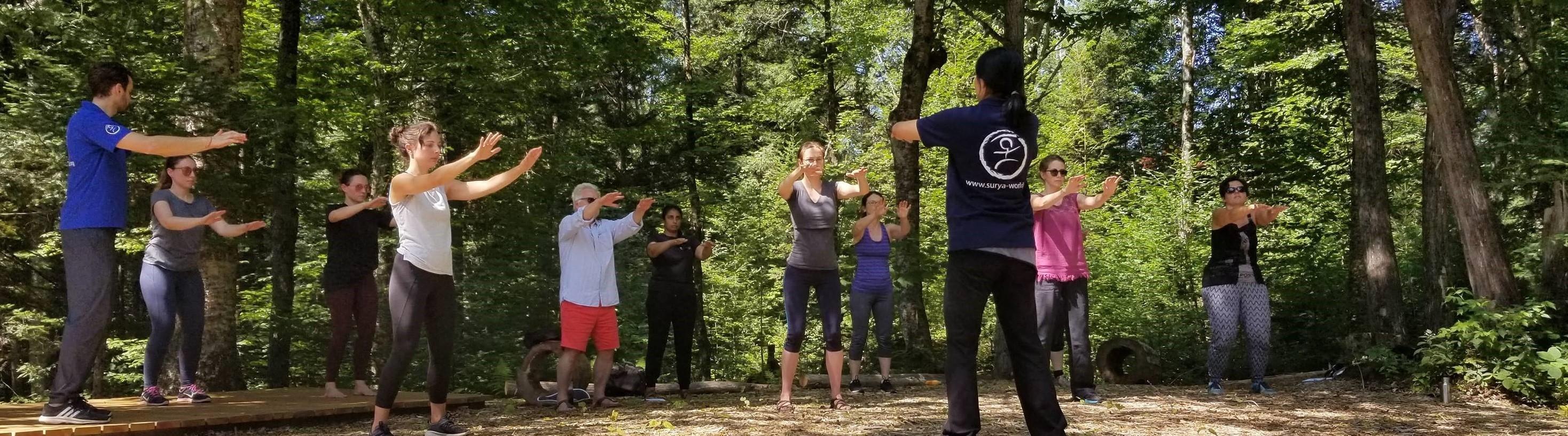 Quebec:  Retreat - Yoga and Ecology