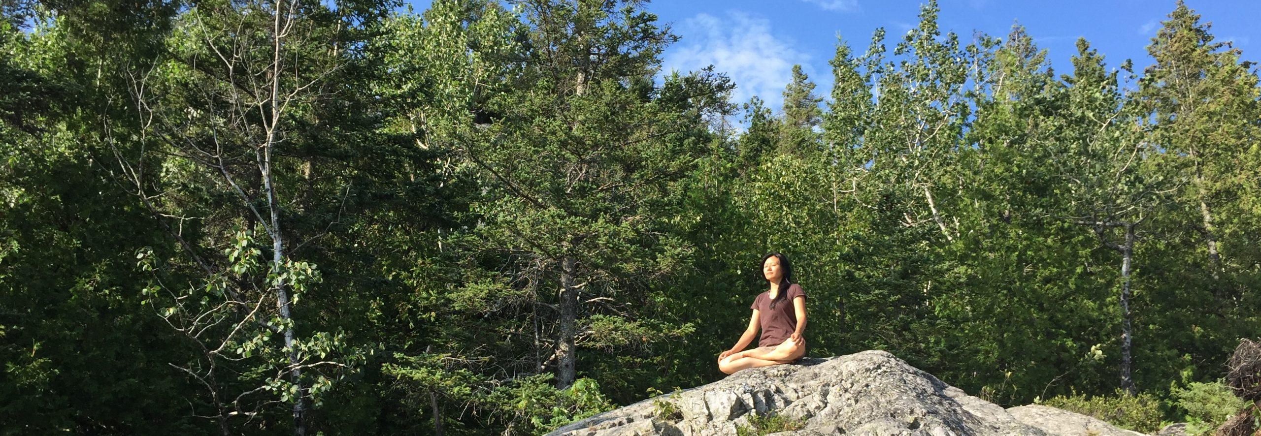 Montreal : introduction to the creative meditation