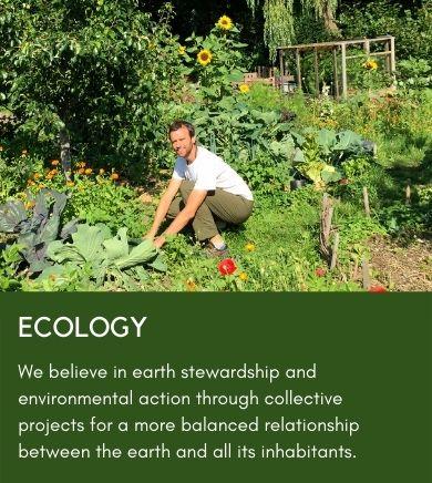 surya-ecology